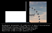 Нажмите на изображение для увеличения Название: pb006565.png Просмотров: 125 Размер:54.6 Кб ID:18864